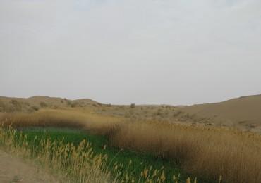 A Neyzar in heart of desert